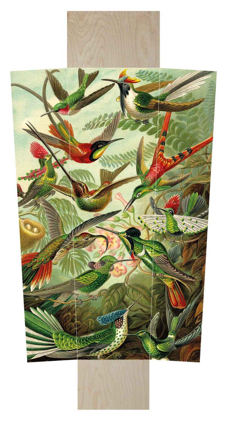 Uitvaartkist Doodskist Beerenberg vogels Heackel layout